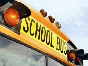 School-bus-back-of-bus-with-writing_150415